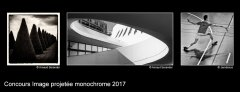 Image projetée monochrome 2017